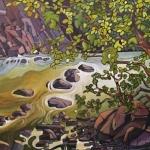 Ashnola River by Virginia Boulay ©